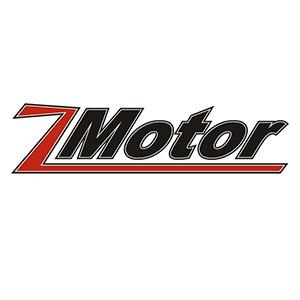 Z-Motor